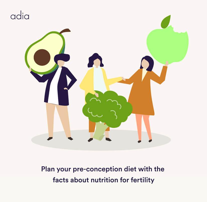 fertility diet plan